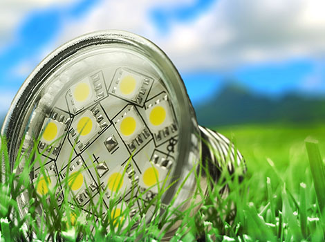 Led Bulb Outdoors Grass | GreenBee