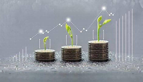 Coinc Growth Chart | GreenBee